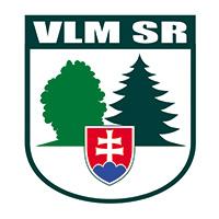 VLMSR